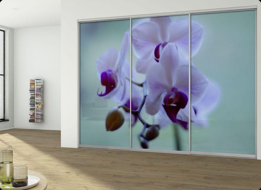 Вид стеклянных дверей для шкафа - книжный ассортимент